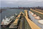 grain seaborne trade