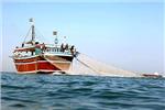 کشتی مخصوص صید فانوس ماهی