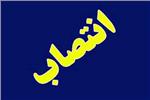 شفقتی