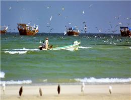 اتمام گشت ارزیابی ذخایر در آبهای عمان
