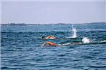 مسابقات شنا
